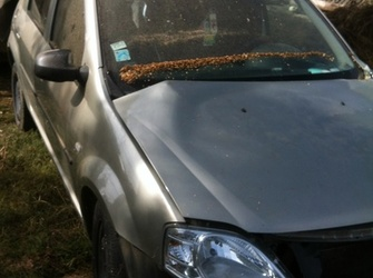 Vand coloana volan pentru Dacia Logan,