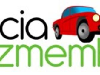 Caseta servo simpla logan 0733.578.374 www.daciadezmembrari.ro